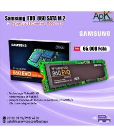 Samsung SSD Interne 860 EVO M.2-250 Go